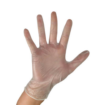 Vinyl Gloves PowderFree Clear Large x 100